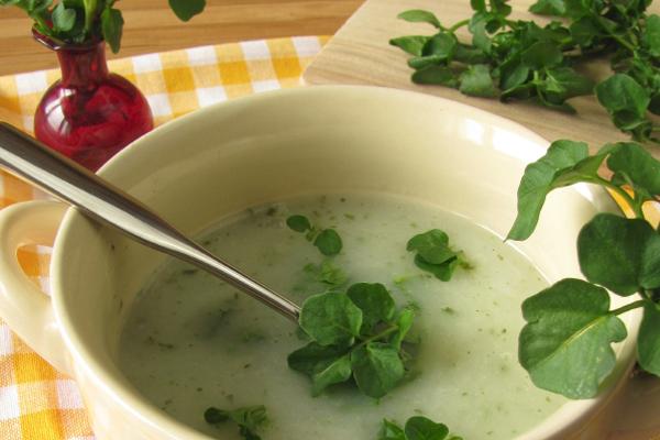 waterkers soep
