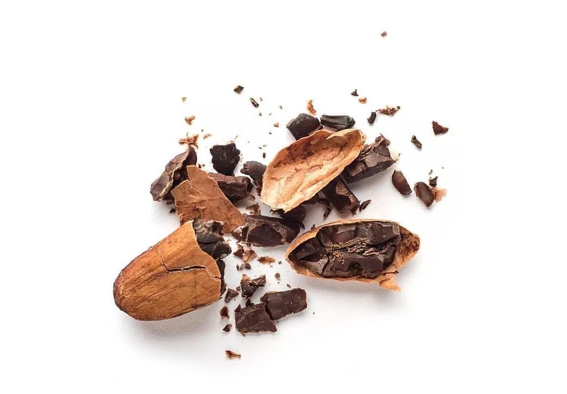 cacao boon design